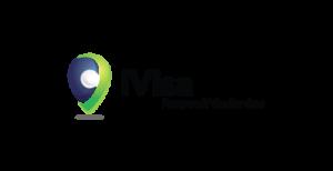 visados online